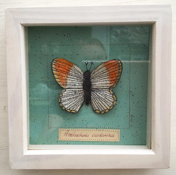 Orange Tip Butterfly Large (Frame)