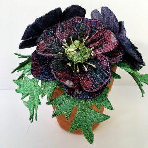 Poppy Pot Plant