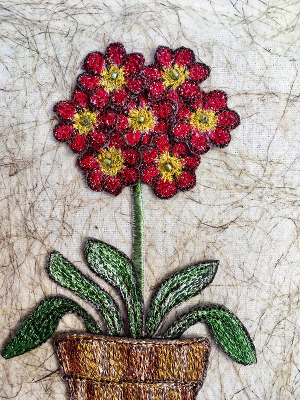 Red Auricula (Detail)